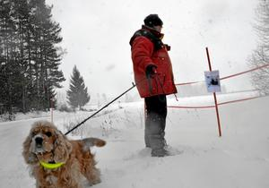 Vaktar ägorna. Stina Larsson och hunden Bilbo inspekterar markerna. Nu har Stina och Sune satt upp skyltar för att visa var snöskoterförarna inte får åka.