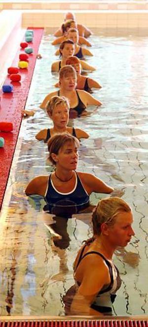 Foto: LASSE HALVARSSON Känsla för vatten. Proffsbadare i långa rader har intagit Parkbadet under ett par dagar för att inspireras till en ny höstsäsong på badhus och rehabiliteringsanläggningar.