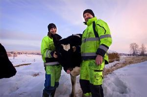 Beatrice och Pär-Erik Andersson är inte positivt inställda till att eko-tillägget nu sänks med fem öre.