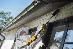 På sommaren blir det många getinguppdrag för bekämpningsspecialister. Ibland kan getingboet sitta inne i taket och pulver sprutas därför in i ingången.