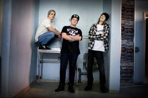 News from the front har spelat tillsammans sedan 2001. Tillsammans med åtta andra punkband medverkar de på en ny samlingsskiva.