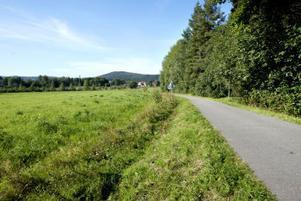 Lummigt och grönt. Sydkraft hoppas att kommunen ska hålla med om att området kring Blå Katten lämpar sig väl för bostadsbebyggelse.