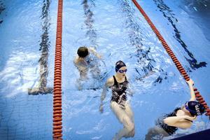 William Dahl, Anna Sjöholm och Kajsa Bergman är vana simmare.