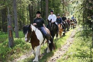 En riktigt härlig dag tillsammans. Det hade de 18 ryttarna med sina hästar när de tog sig an vildmarksleden. Turligt nog hade den tryckande hettan från tidigare gett med sig.Foto: Ann-Cathrin Granbäck