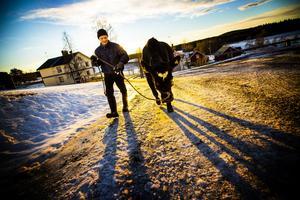 Vid foten av Almåsaberget bor mjölkkon Blada tillsammans med Johnny Hördell och Diana Dahlberg, tre barn, en hund, 14 mjölkkor och ett gäng ungdjur.