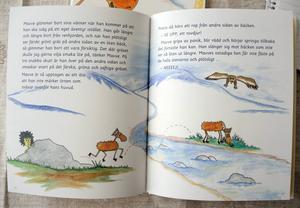 Nu kan man läsa om renkalven Mavves äventyr även på svenska.