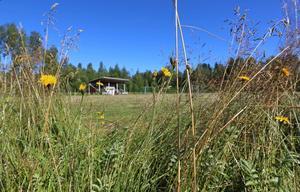 Flera klassiska fotbollsklubbar i Dalarna har lagt ner verksamheten och antalet lag i seriespel har nästan halverats sedan år 2000.