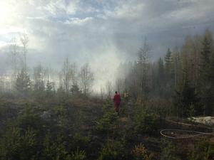 På torsdagen orsakade en gnista från ett tåg en skogs- och gräsbrand i Bomhus.