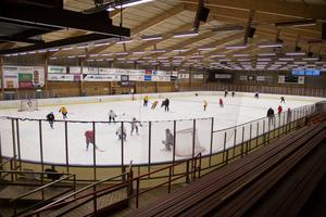 Hockeyrinken kan få nytt liv om Hoforspartiets motion går igenom.