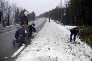 Det är Lars Svanberg, länsstyrelsen samt tre poliser från Strömsund, Björn Svanberg, Lars Rosenberg och Åke Deffby på den plats där vargen blev påkörd av en bilist.