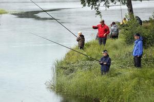Ett 30-tal unga deltog i fisketävlingen i Ygssjön i går eftermiddag. Vinnarna blev de som fick upp mest abborre, löja, mört och brax på två timmar.
