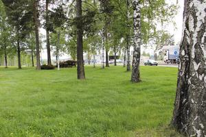 I dag är det bara träd och buskar, nedanför Hagaskolan, vid Hofors östra infart där kommer Burger King kommer etablera sig.