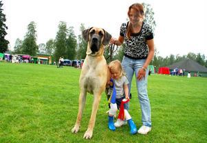 Anna Billefält med sitt barnbarn Gry Billefält och grand danoin Svanthe. Som ni ser är han stadig att luta sig mot.