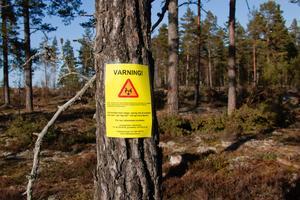 Under lördagen satte någon upp skyltar som varnar för oskygga vargar i Rialareviret.