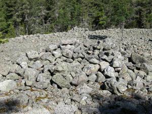 Så här ser en av Leskärs möjliga vikingagravar ut – eller om det är skjutskål. Där får man inte plocka stenar, säger arkeologen Elise Hovanta,Foto: Elise Hovanta