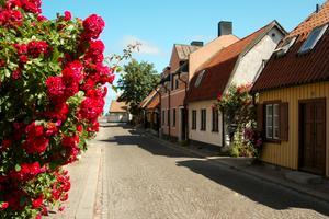 Visby är populärt så in i Norden.