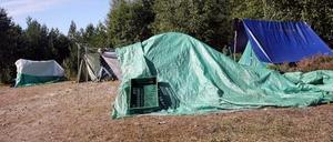 Här långt in i skogen har bärplockarna slagit upp sina tält och presenningar. Marken ägs av Stora En