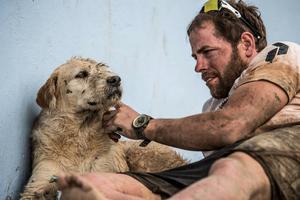 Hunden Arthur fann kärleken i Mikael Lindnord. En mållinje är passerad. Nästa mål är att nå Örnsköldsvik. Foto: Krister Göransson/ Peak Performance