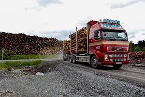 Hissmofors sågverk har man tvingats ändra arbetssätt för att kunna ta emot allt stormfällt timmer. Nu mäts inte varje stock var för sig på alla timmerbilar. Det görs på var tionde lastbil, som får sätta måttet för de andra nio.