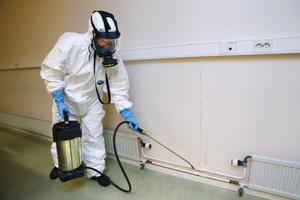 Fullt utrustad. Så här ser Ann Larsson på Inspectera ut när hon utrotar vägglöss. Bekämpningsmedlet måste nå in i minsta skrymsle. Kackerlackor måste utrotas på annat sätt, främst genom att utrotningsmedel läggs ut i form av ätbar gel.