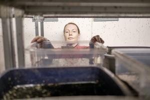 Emma Åhlén inne i sin myggodling