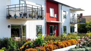 Så här ser ett av de nya husen som Bergs hyreshus vill bygga i Hackås ut. 2016 är det tänkt att bygget ska starta.