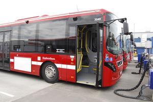 Bussarna ska drivas med RME, ett bränsle baserat på raps, och i alla bussar installeras en dator som ska hjälpa föraren att köra miljömedvetet.