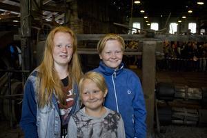 Syskonen Noa, Malte och Stina Strid besökte Järnets dag tillsammans med sina föräldrar. De var alla överens om att det var kul att se på järntillverkningen.