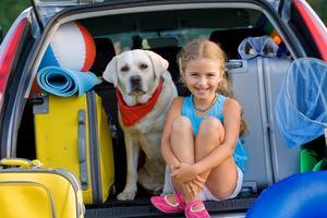 Var tredje hund- och kattägare väljer enbart resmål dit husdjuret också får följa med.