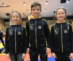 Syskonen Ellen, Alvin och Agnes Lundgren.Foto: Läsarbild
