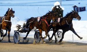 Oscar J Andersson syns knappt bakom Penny of Man när han ger sitt allra sista i finishkörningen på väg mot knapp seger. Invändigt spurtande Myrna Minkoff nådde nästan ända fram.