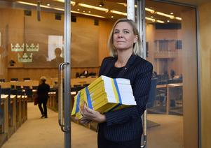 Regeringens och finansminister Magdalena Anderssons (S) ökade skatteuttag på entreprenörer imponerar föga på Småföretagarnas riksförbund.