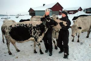 ÖMHET. Kärleken till djuren är en viktig del för Jeanette Söderblom Johnsen och Malin Norén som tillsammans driver Eskesta gårdsmejeri.