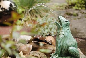 Vatten i Gunillas trädgård.