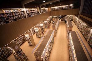 Projektpengarna som Östersunds bibliotek har fått ska användas till att hjälpa nyanlända att göra sin röst hörd och ge dem möjlighet att vara med och påverka bibliotekets framtid.