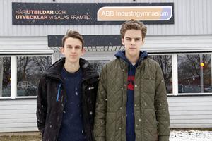 Albin Holmkvist och Erik Lundén vann med sitt UF-företag CSGOCenter i kategorin