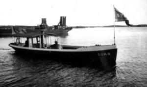 """Theodor Åhlströms """"Svan""""."""