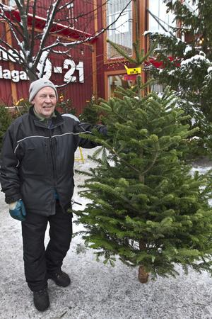"""DYRASTE GRANEN. 640 kronor får man hosta upp för en dansk kungsgran utanför Maxi. """"De ser mer ut som Kalle Anka-granar"""", säger granförsäljaren Christer Söderman från Skärplinge."""