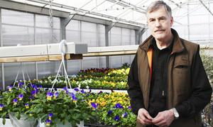 Leif Olander har drivit fram 15 000 egna plantor på växtgården Solhems utanför Fellingsbro.