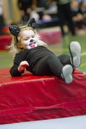 Fyraåriga cirkushunden Emma Jarl visar vad hon kan.