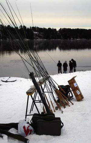 Under lördagen arrangerades flugfiskets dag i Bergeforsen. Dels för att visa att älven är bra för flugifiske, dels som en manifestation mot ryckfisket.