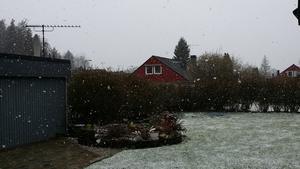 Detta snöfall över Blombacka fångades på bild tidigare i veckan.