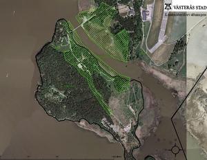 Flygfoto över Björnön med de områden som ska gallras. KARTA: VÄSTERÅS STAD