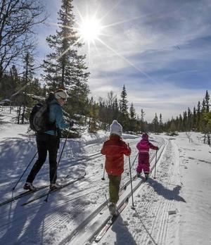 En mamma och två barn på skidtur i ett soligt vinterlandskap. En idyllisk bild av fysisk motion som står idrottsrörelsens ideella tanke nära.