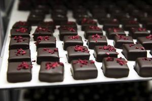 Hallonpraliner tillverkas av mörk choklad, skogshallonpuré, grädde. De doppas i tempererad 56,8-procentig kakao och kakaosmör. Sist dekoreras de med frystorkade hallon uppepå.