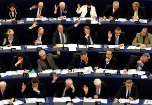 En session pågår just nu i EU-parlamentet och snart väljs nya kandidater. Men det är bara intressanta budskap som kan få väljarna att verkligen lyssna och rösta. Sociala medier är medel, inte mål.