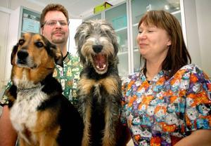 Djur är förstås ett stort intresse hos familjen Eksell. I nedervåningen har de sin veterinärklinik och på övervåningen bor Per och Elna tillsammans med sina tre barn och hundarna Rune (till vänster) och valpen Gunnar. Igår fick de ta emot priset