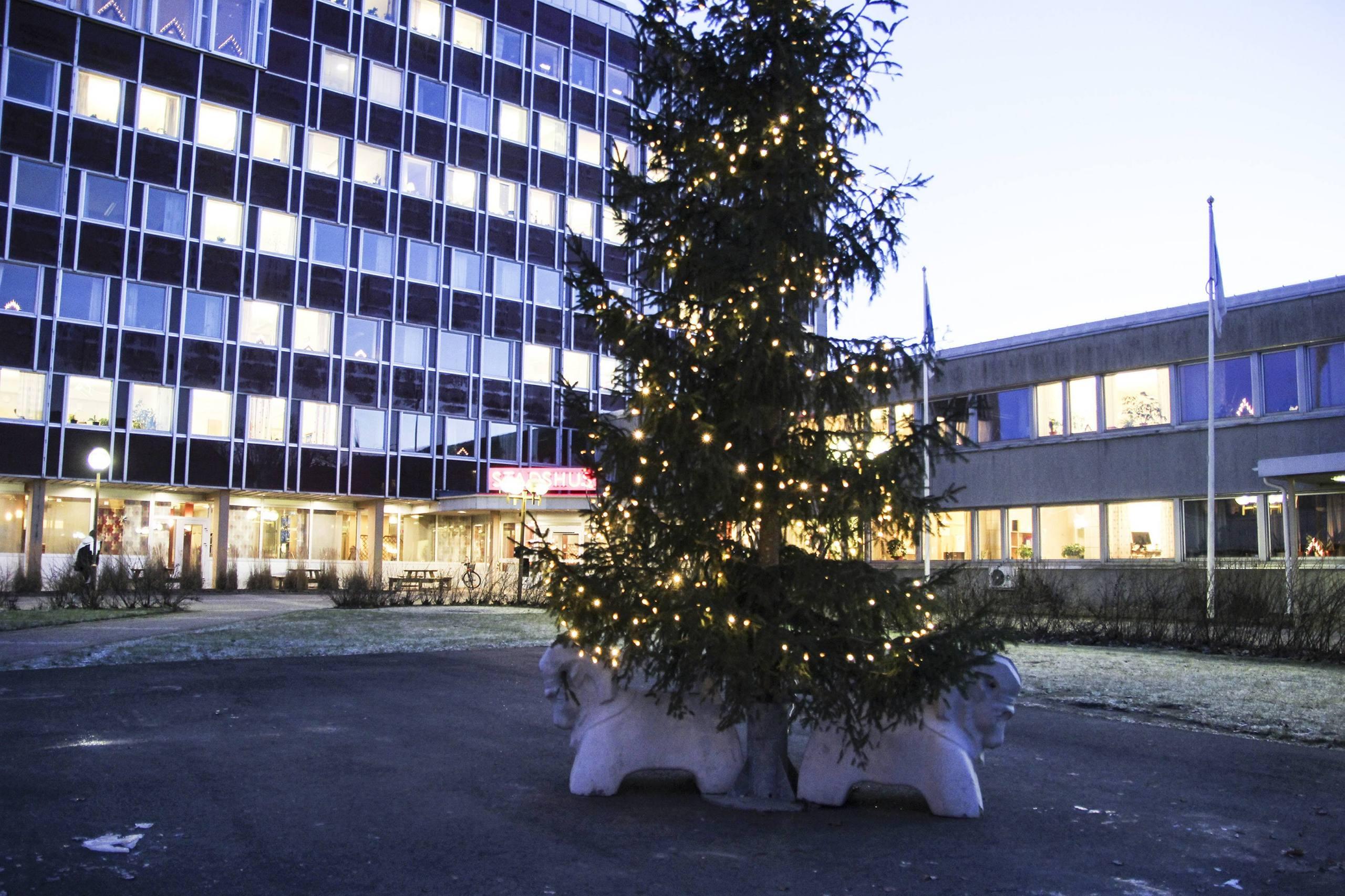 Ideella krafter vill hjalpa till med julen