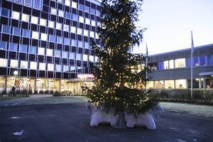 Antalet hushåll med försörjningsstöd Bollnäs har nästan fördubblats på nio år.