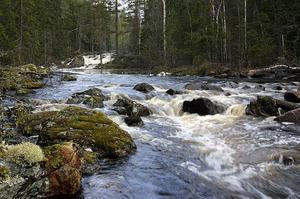Stugsjöströmmen ligger inom området som nu blir Ekopark Grytaberg.